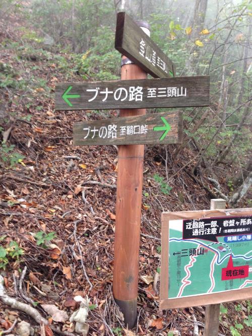 kikanntominnomori03.jpg
