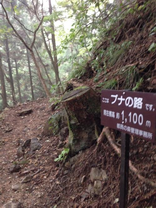 kikanntominnomori45.jpg