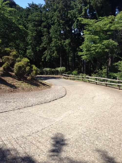 konoyama03.jpg
