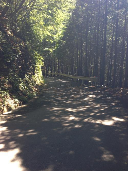 konoyama08.jpg