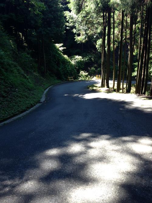 konoyama09.jpg