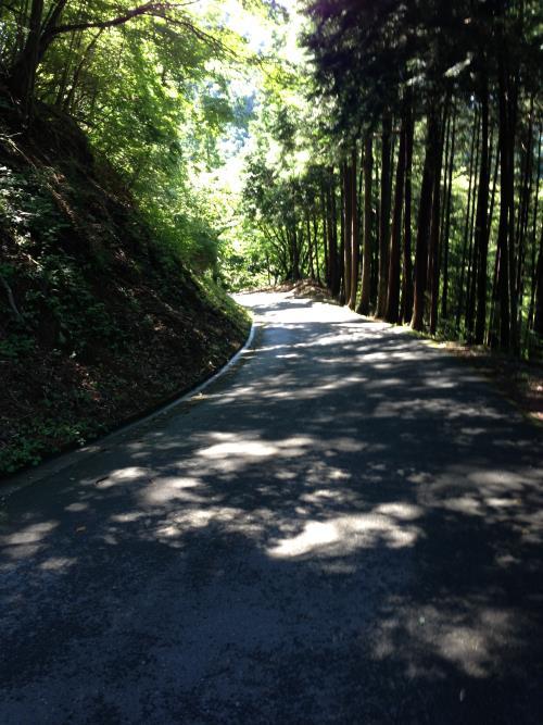 konoyama10.jpg