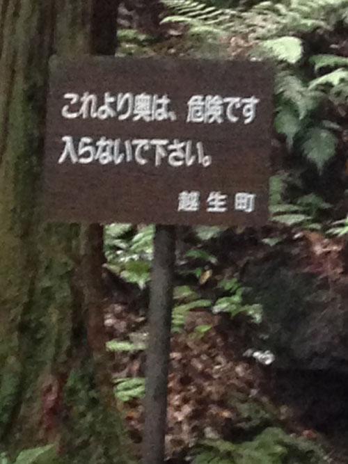 kuroyamasanntaki21B.jpg