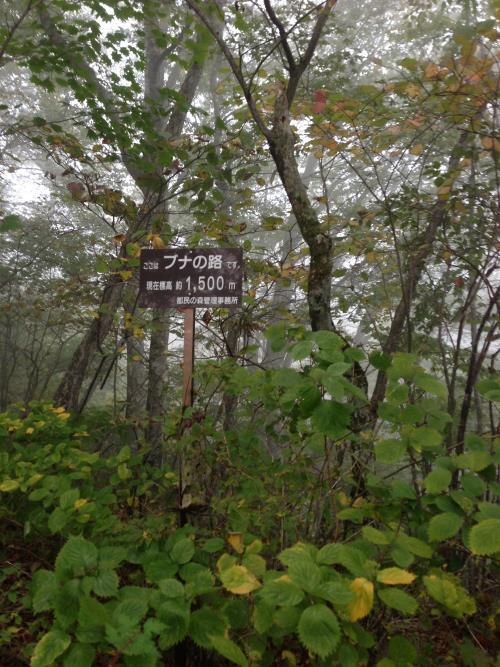 mitousan11.jpg