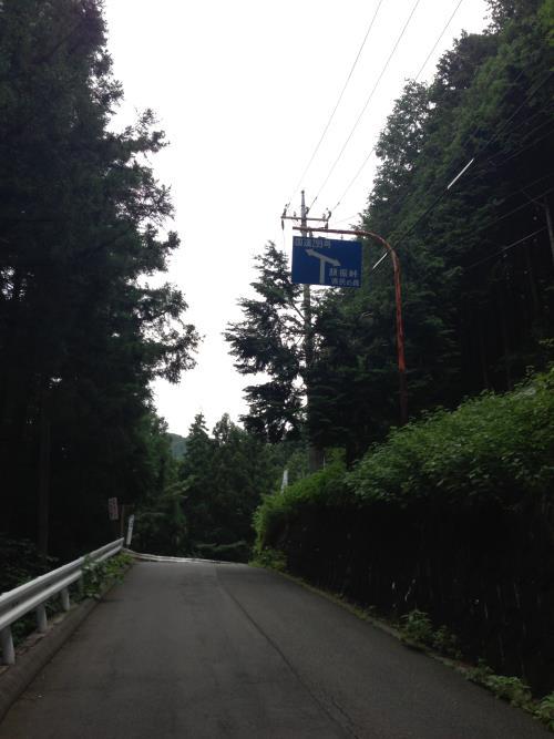 okumusaA06.jpg