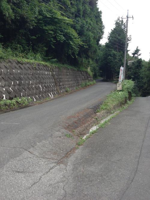 okumusaA07.jpg