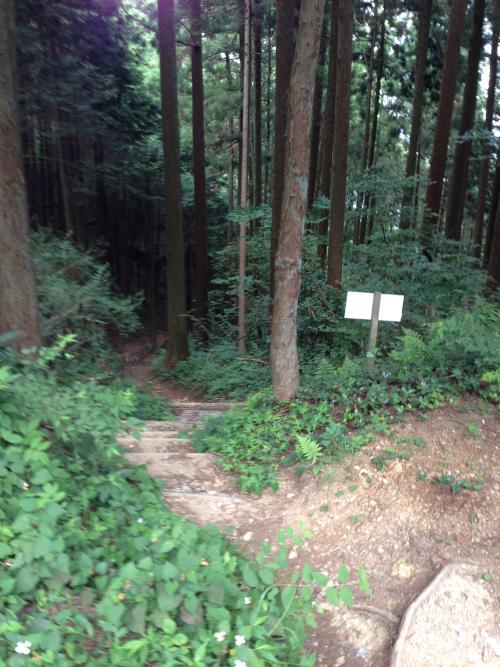 okumusaA22.jpg