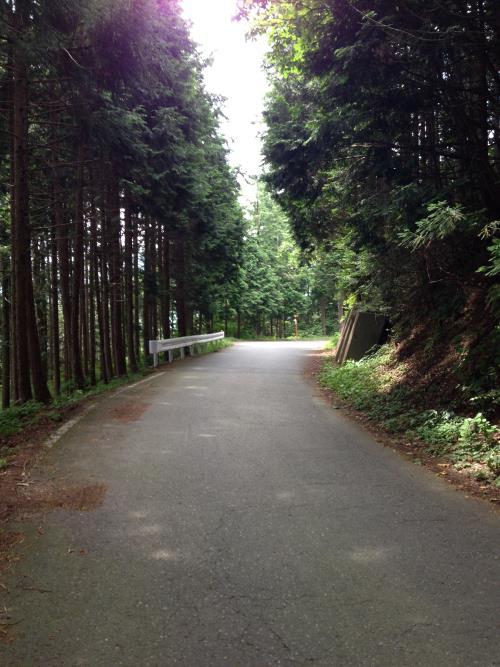 okumusaA29.jpg