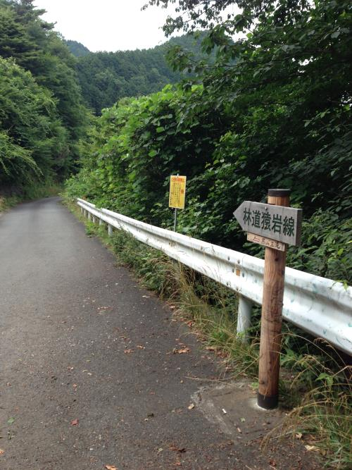 okumusaA31.jpg