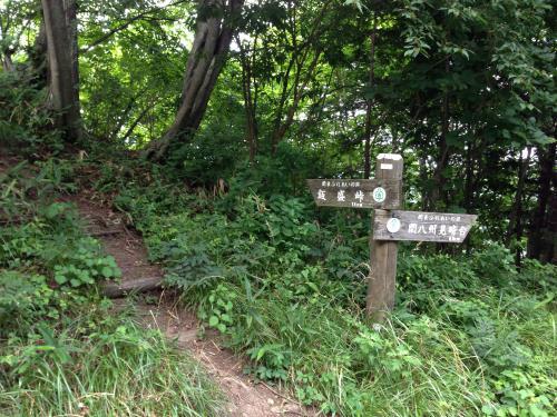 okumusaB02.jpg