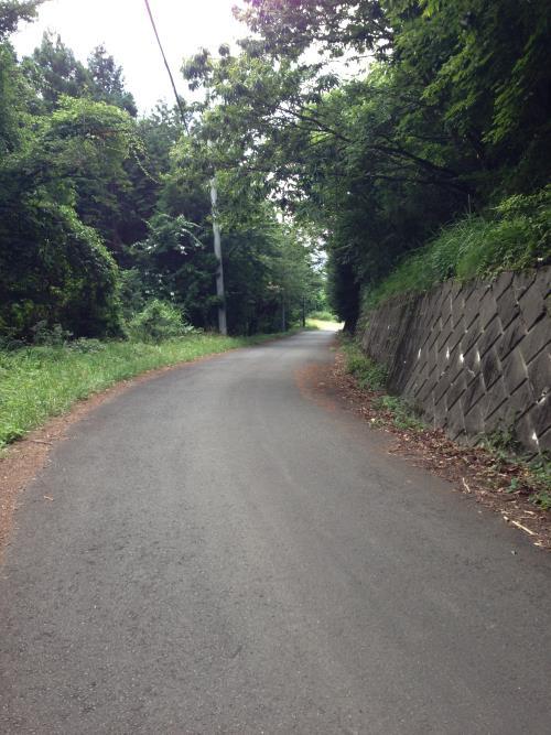 okumusaB04.jpg