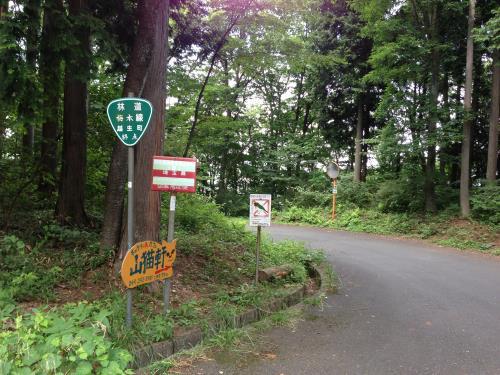 okumusaB08.jpg