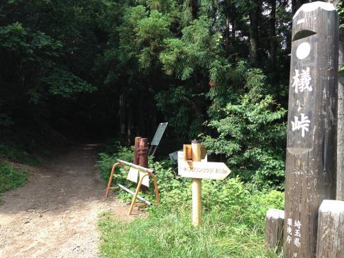 okumusaB18.jpg