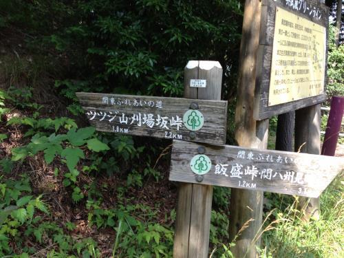 okumusaB22.jpg