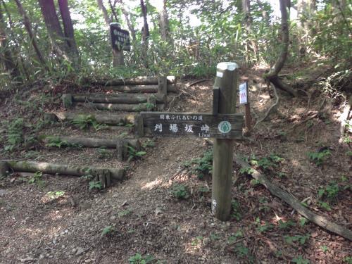 okumusaB24.jpg