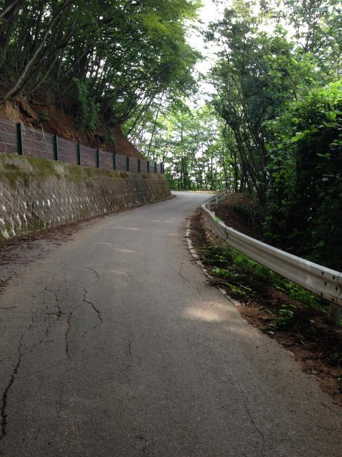okumusaB31.jpg