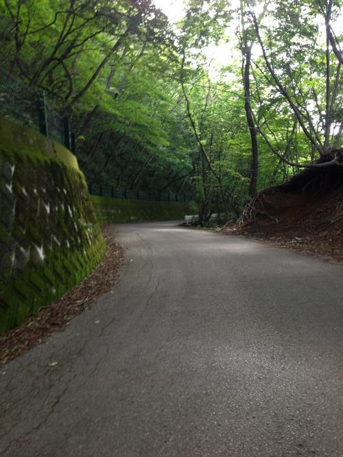 okumusaB35.jpg