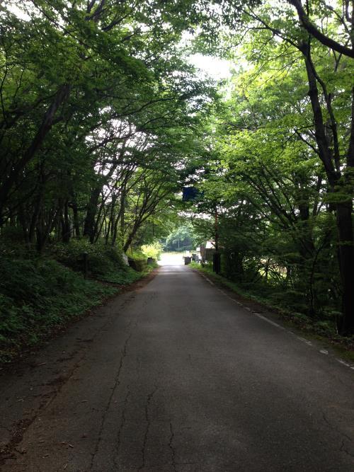 okumusaB36.jpg