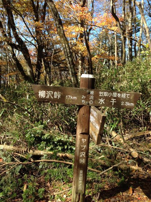 yabusawa36.jpg