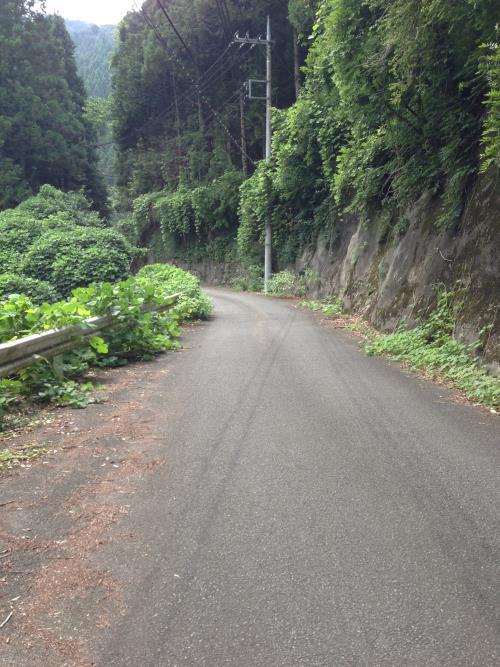 yukubo08.jpg