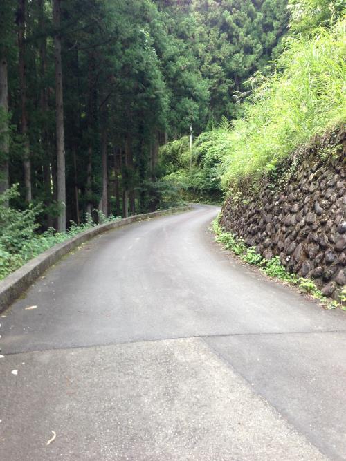 yukubo22.jpg