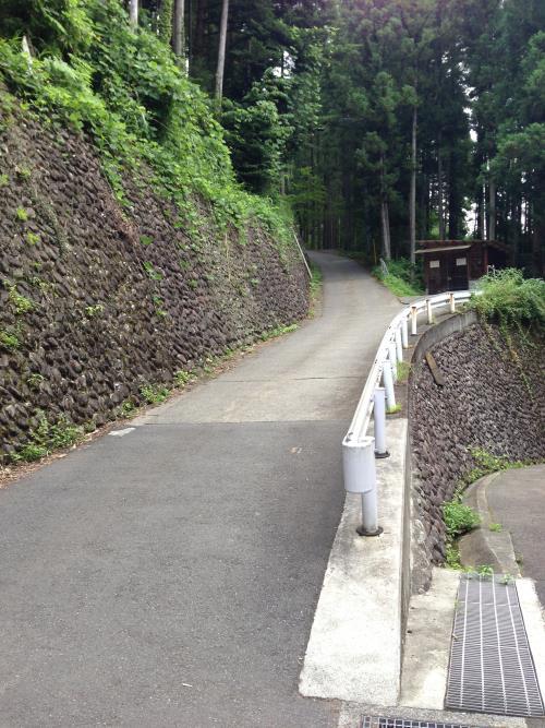 yukubo23.jpg