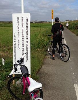 ここから田んぼの中の道へ