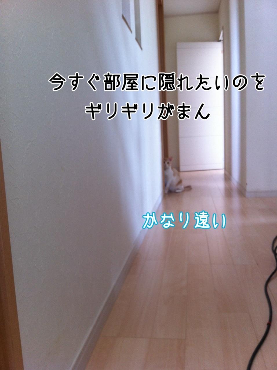 2013100614284819d.jpg