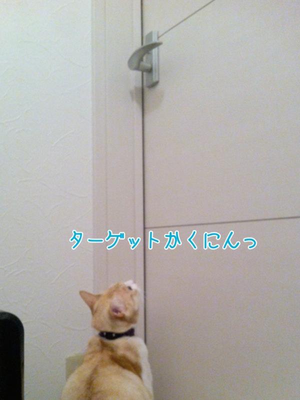 20131119182356808.jpg