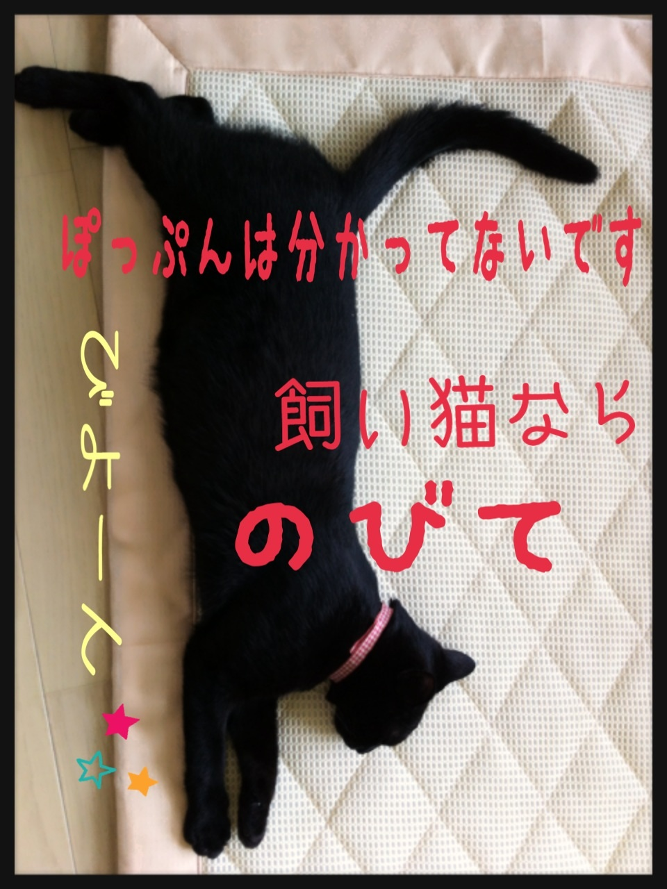 image_20130704155649.jpg