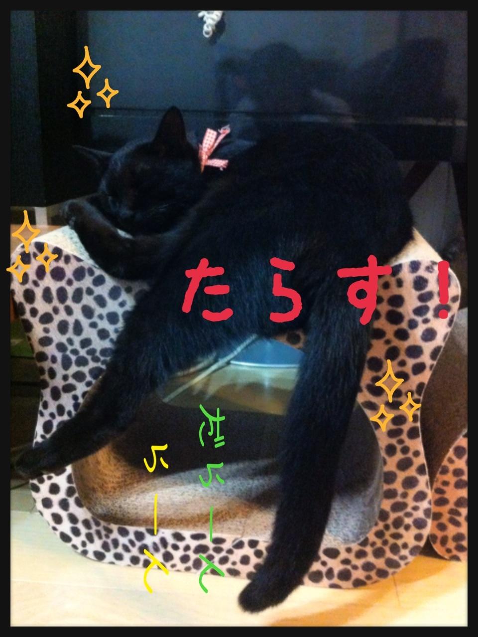 image_20130704155650.jpg