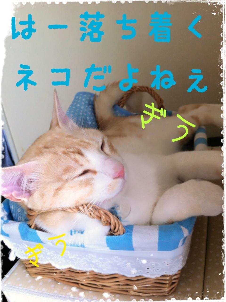 image_20130704155718.jpg
