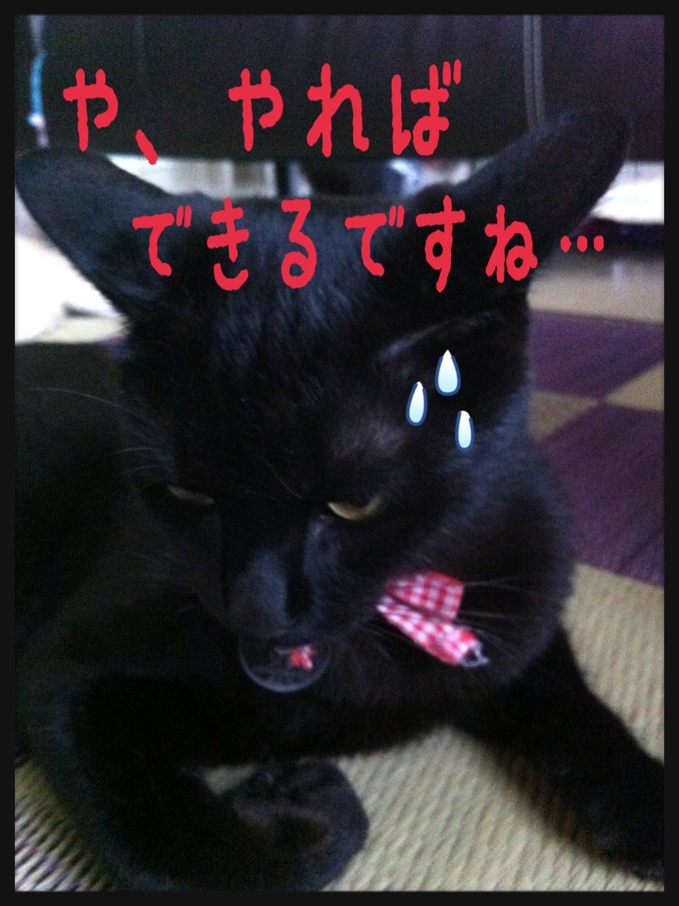 image_20130704195007.jpg