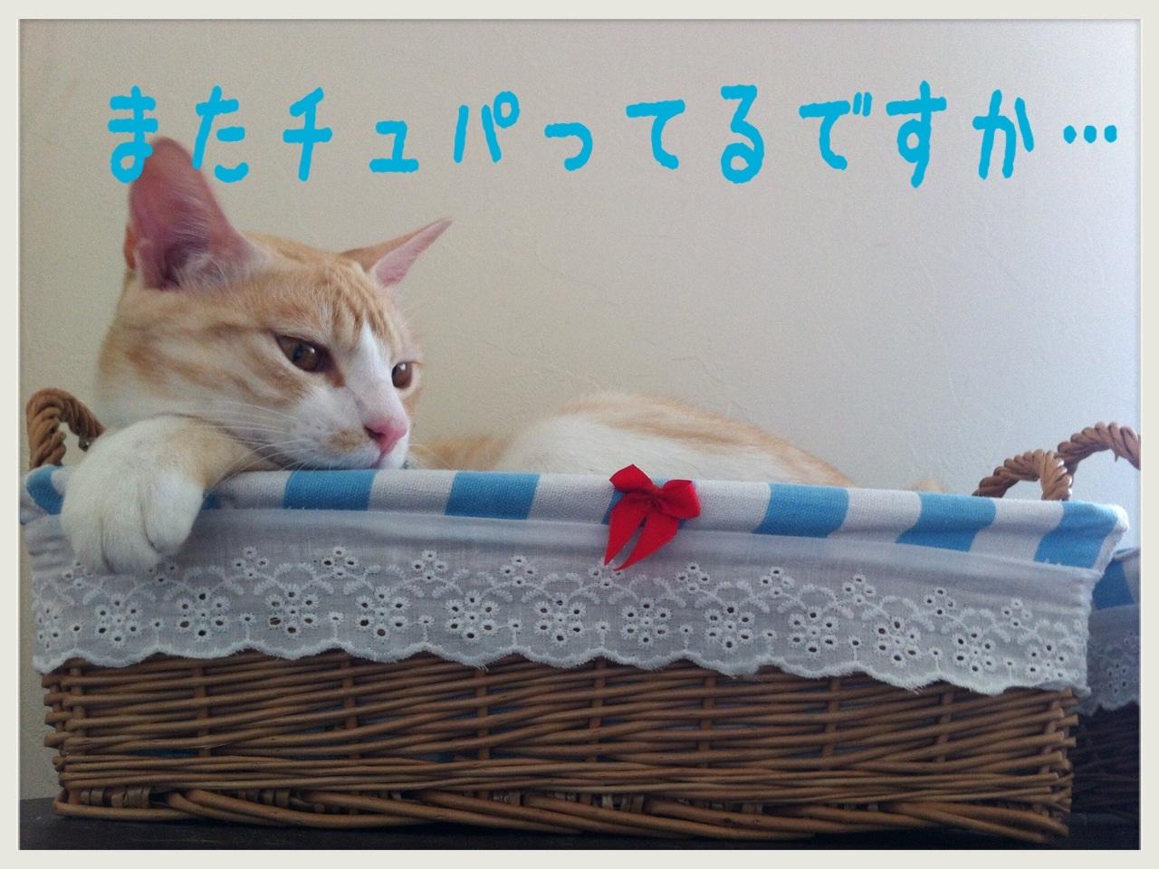 image_20130705173312.jpg