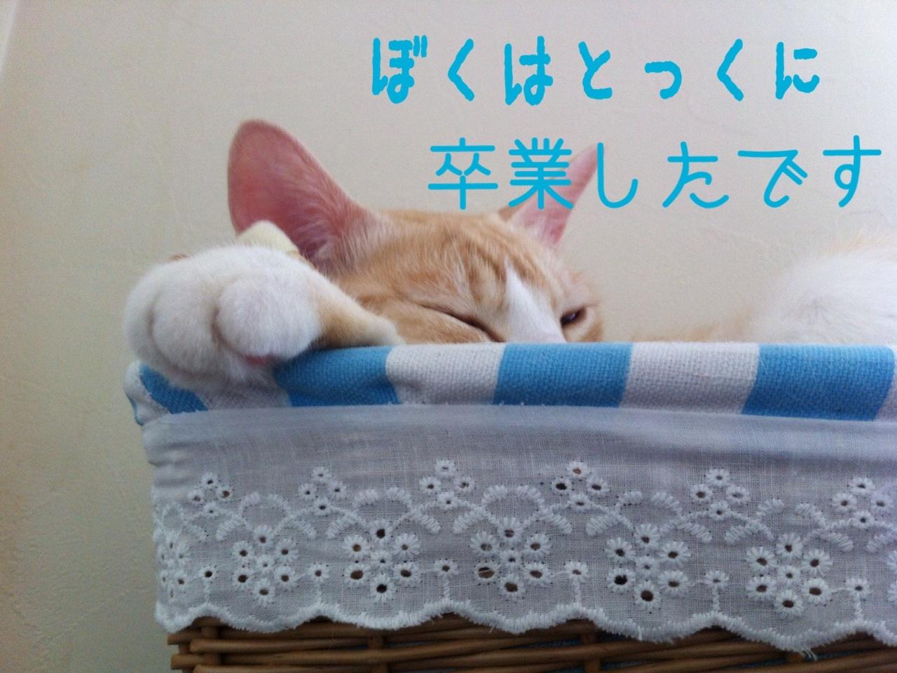 image_20130705173313.jpg