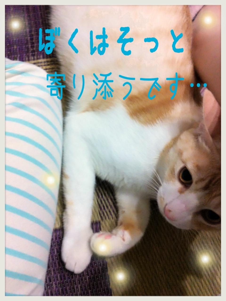 image_20130705173314.jpg