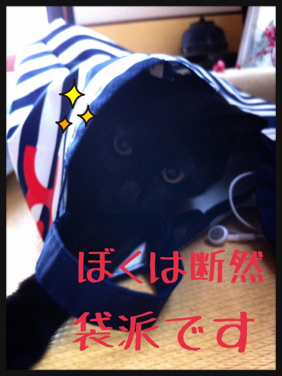 image_20130706222617.jpg