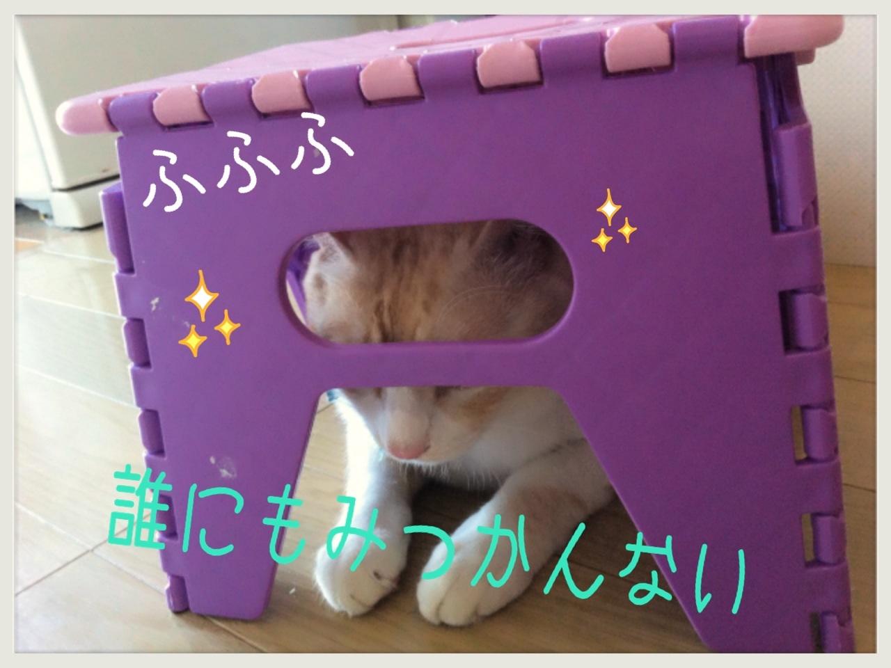 image_20130706222657.jpg