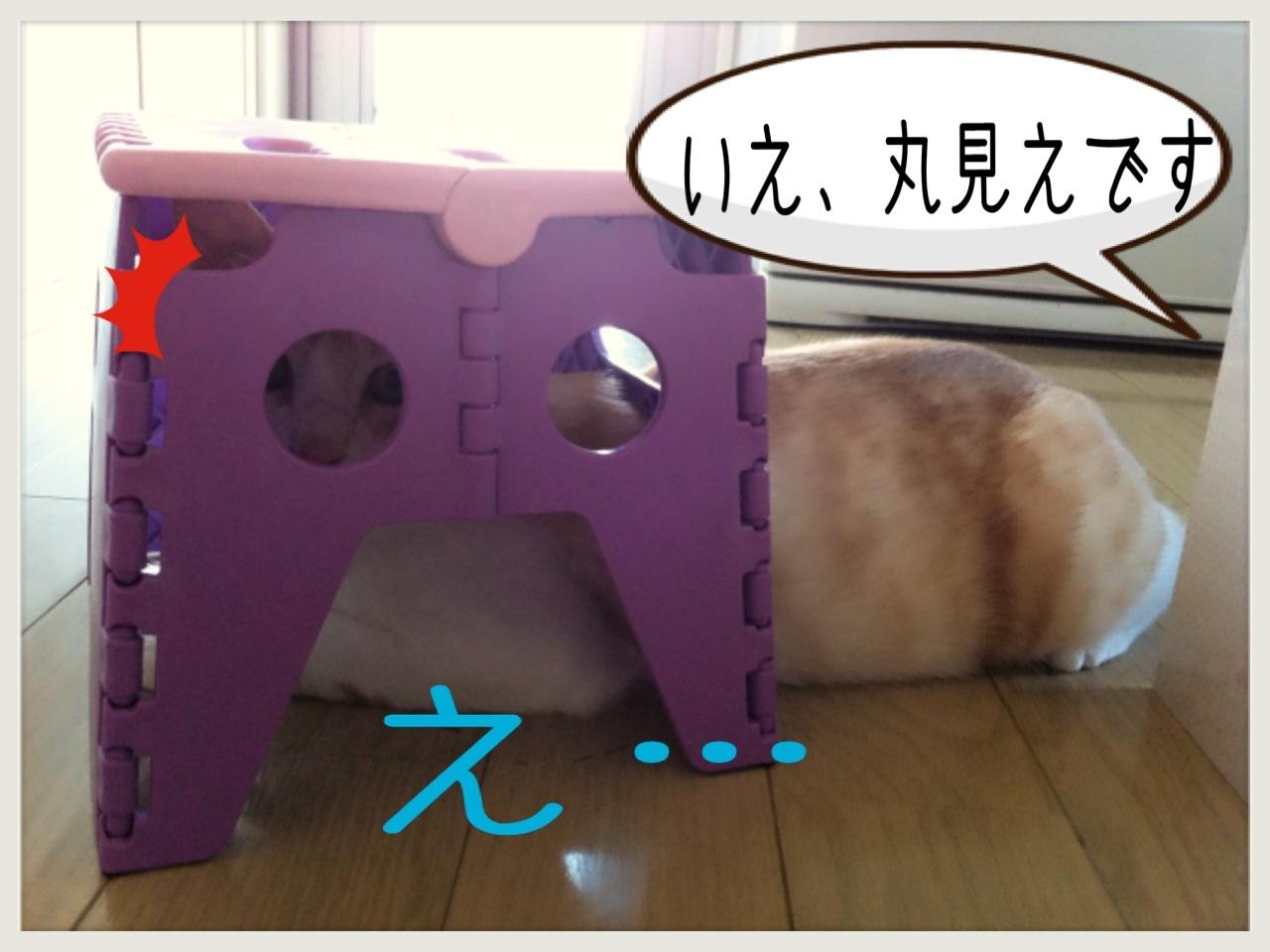 image_20130706222658.jpg