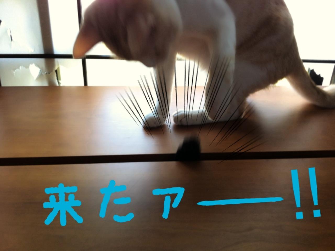 image_20130708200714.jpg