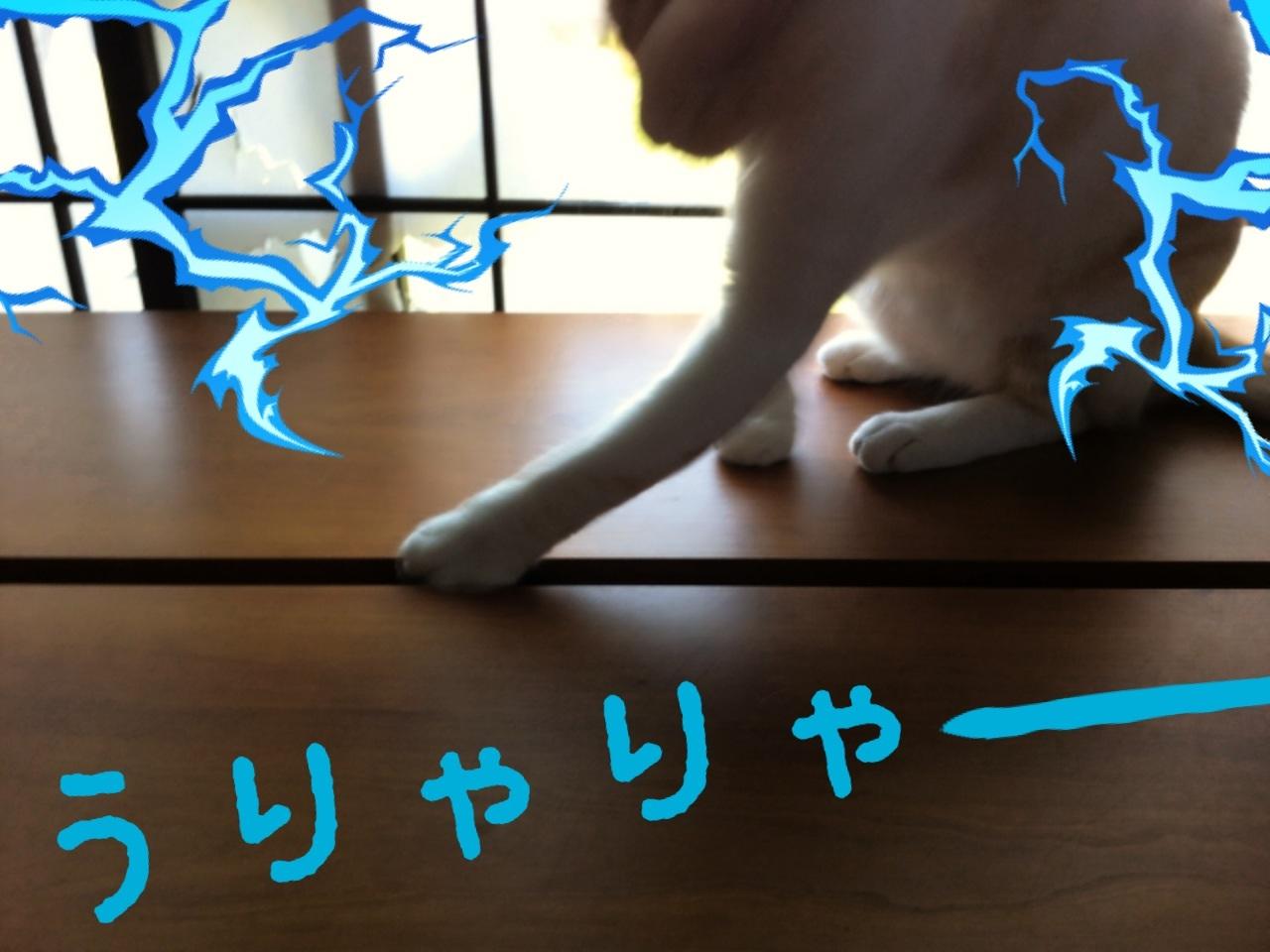 image_20130708200715.jpg