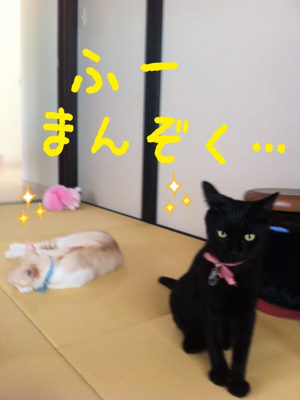 image_20130708200719.jpg