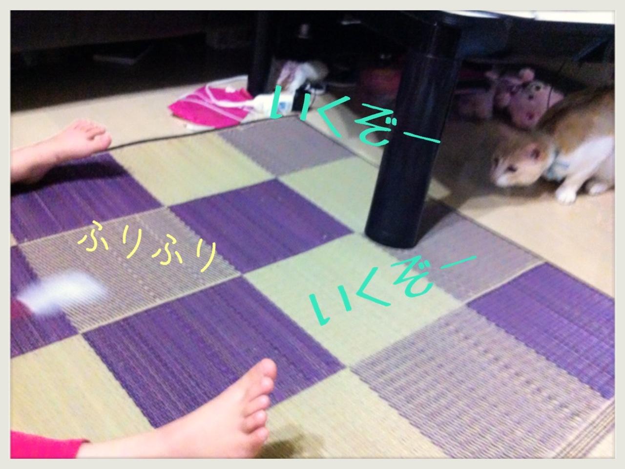 image_20130709152934.jpg