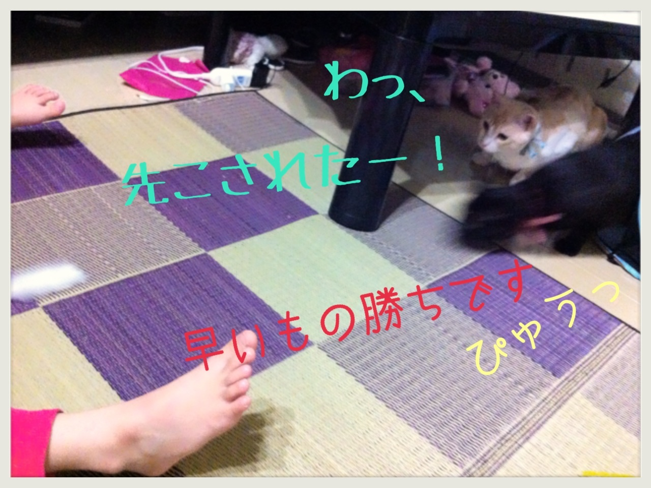 image_20130709152935.jpg