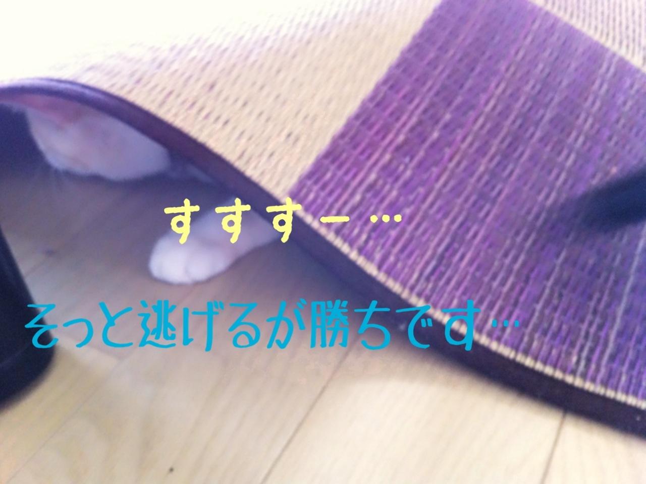 image_20130710222836.jpg
