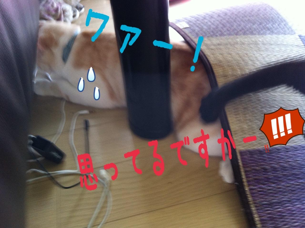 image_20130710222838.jpg