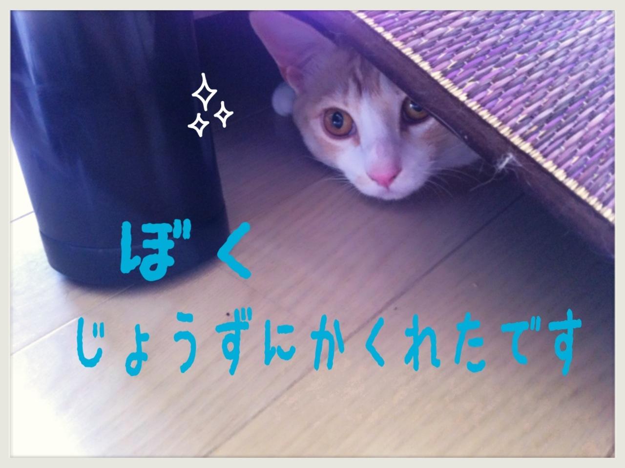image_20130710222859.jpg