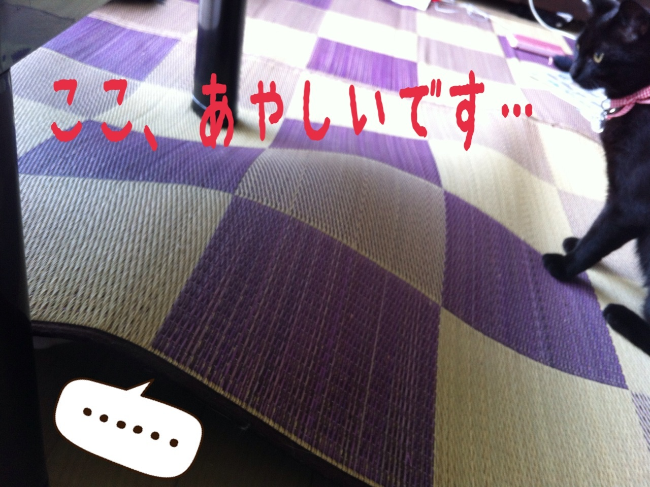 image_20130710222902.jpg