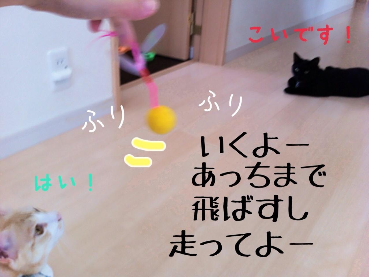 image_20130716230542.jpg