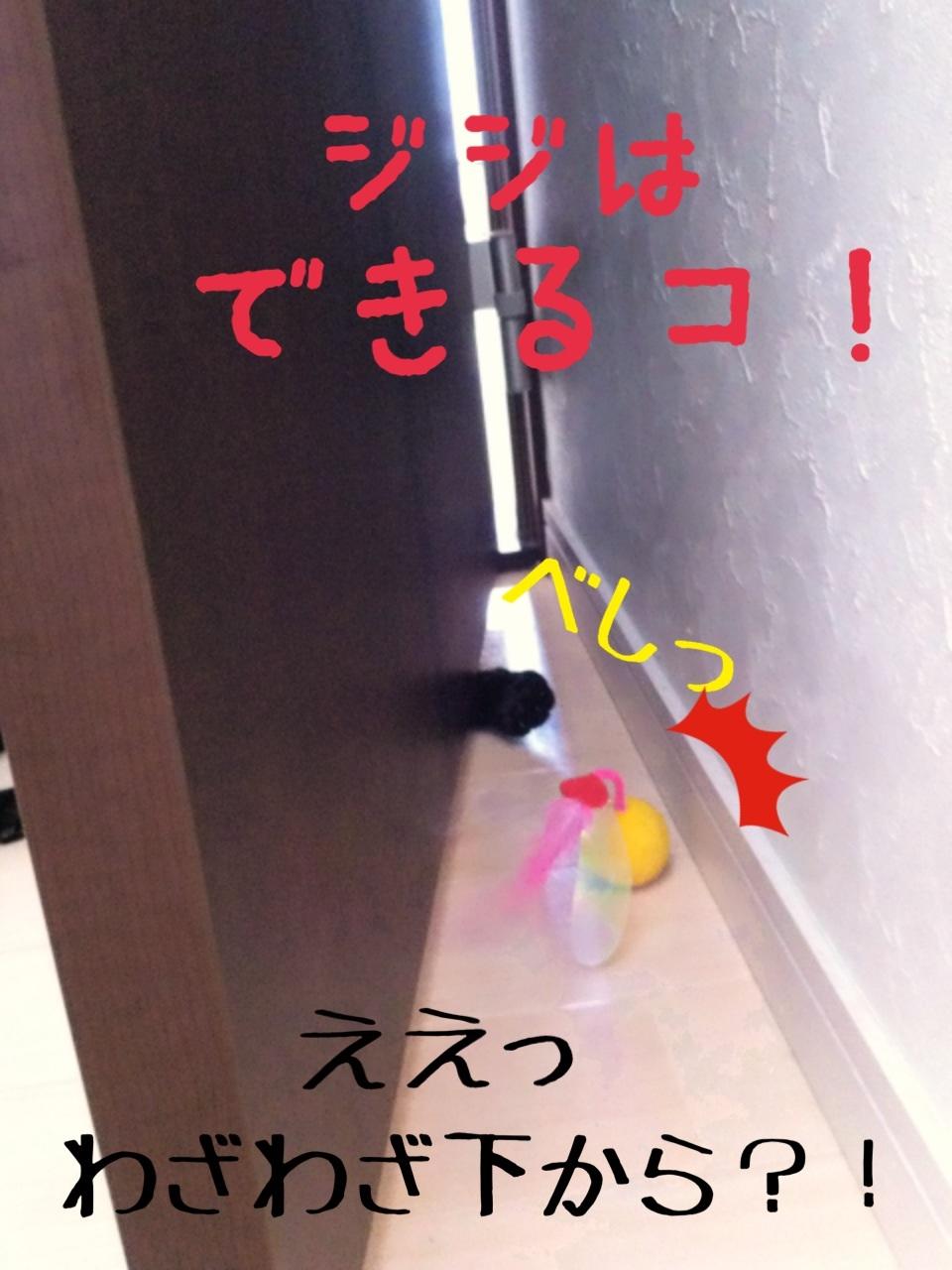 image_20130716230625.jpg